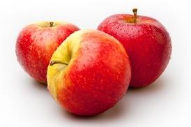 Elstar appels 70-80 middel  per kilo