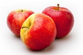 Elstar appels 70/75  klein per kilo