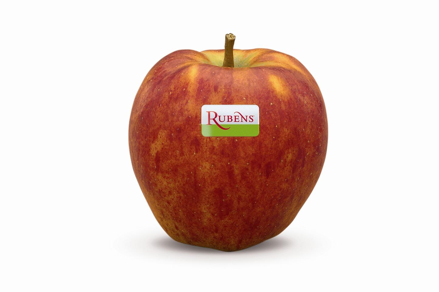 Rubens appel per kilo