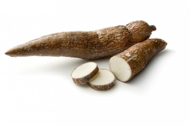 Cassave per kist a. 6 kilo