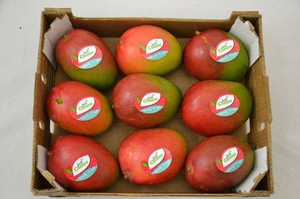 Mango Ready to eat per doos a 9 stuks