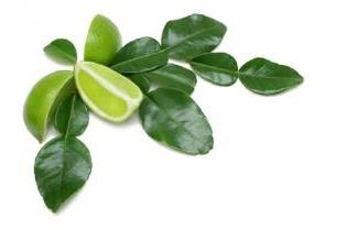 Limoenblad diepvries 500 gram