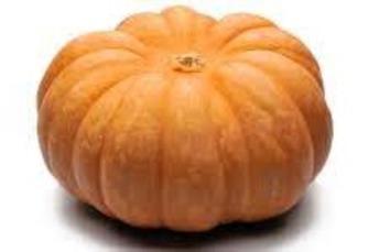Muskaat  pompoen per stuk  4 - 6 kilo prijs p. kilo