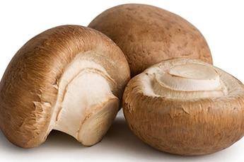 Kastanje Champignons per kilo